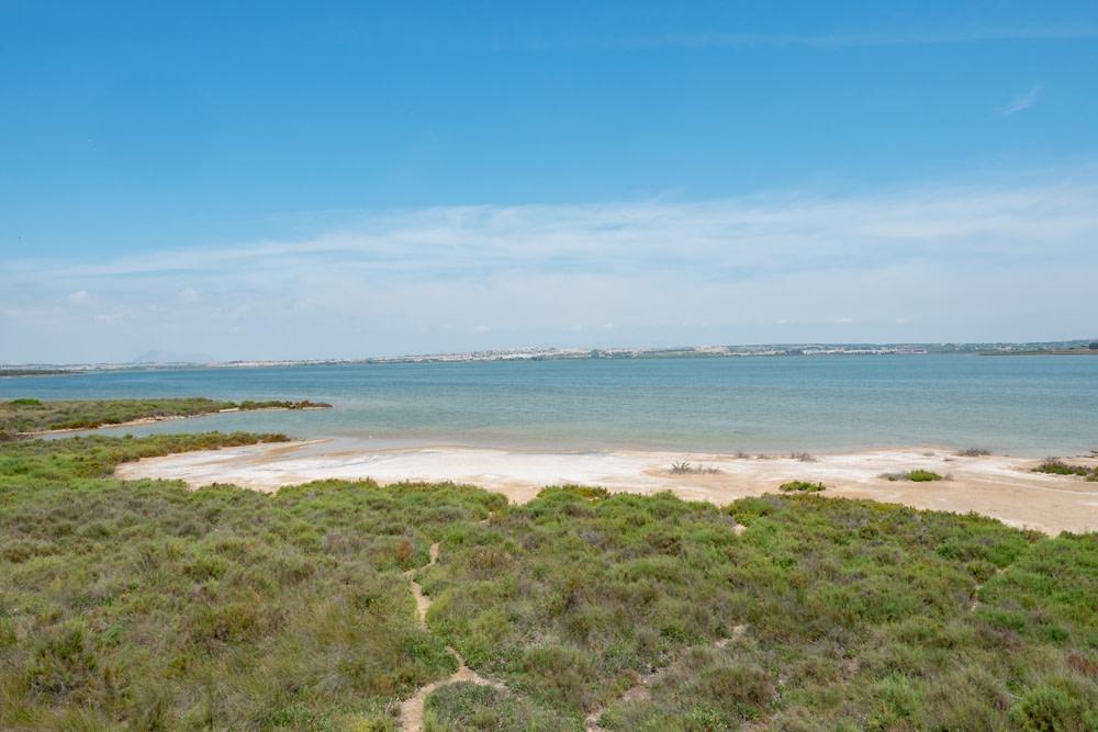 Laguna de la Mata - Torrevieja